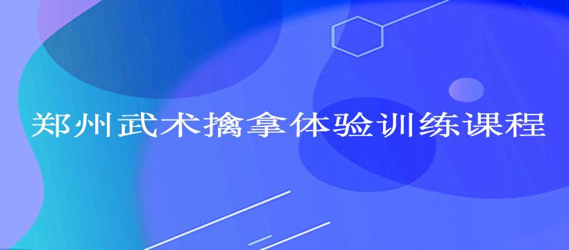 郑州武术擒拿体验训练课程