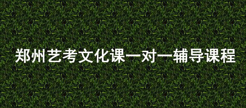 郑州艺考文化课一对一辅导课程