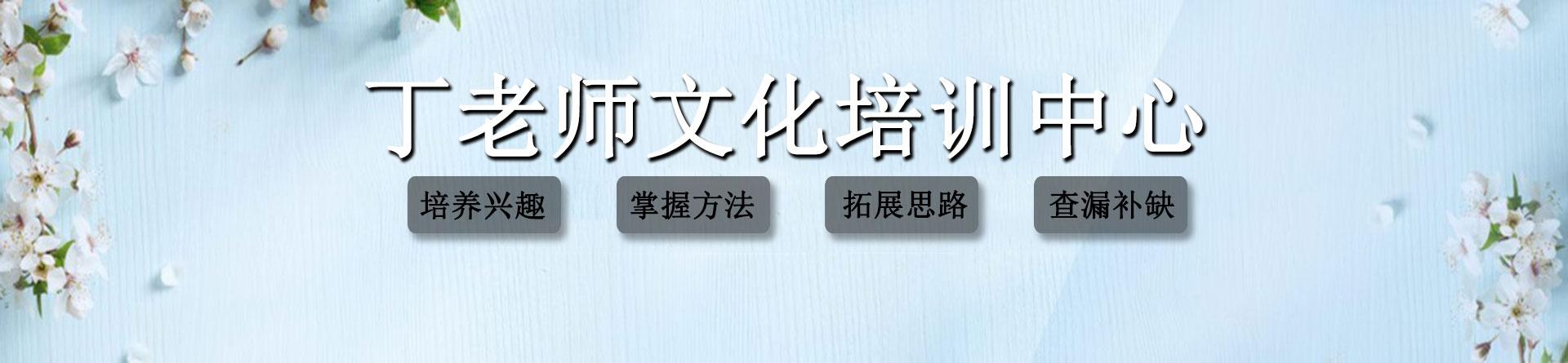 郑州市丁老师文化培训中心