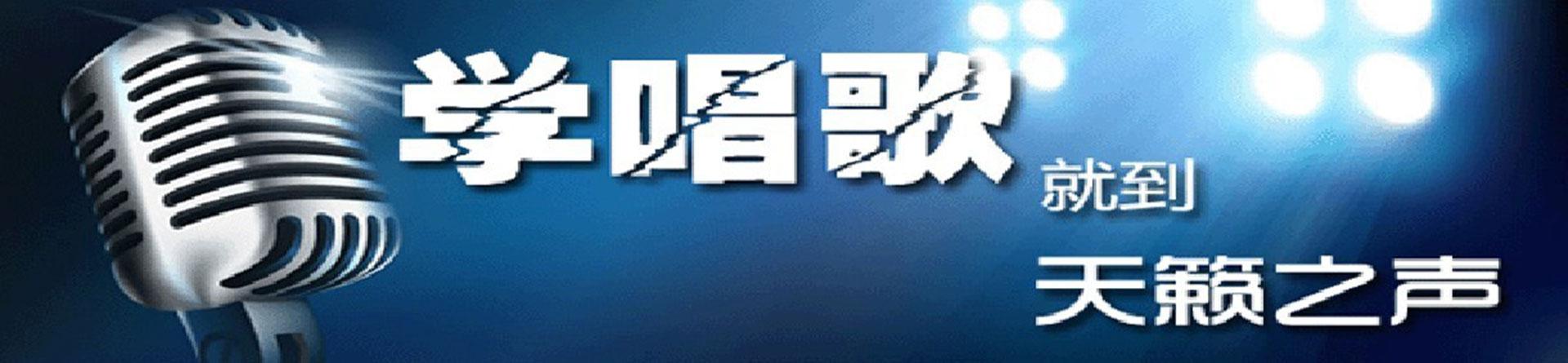 郑州天籁之声艺术培训