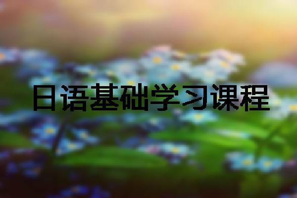 郑州直通车教育