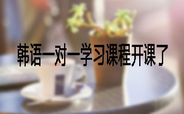 郑州直通车打造韩语一对一学习课程