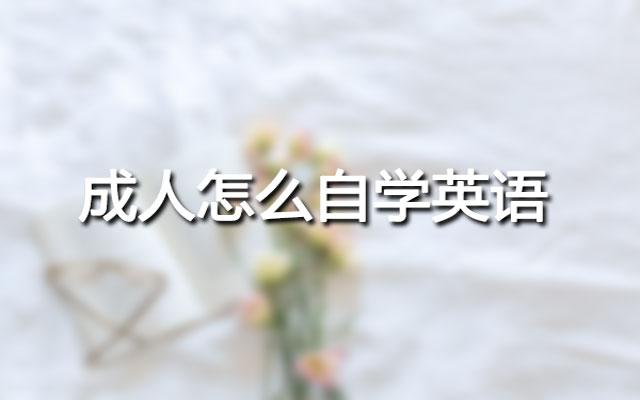 郑州尚渡教育
