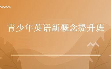 江苏英语培训哪家好,多少钱_青少年英语新概念提升班 _南京美联英语