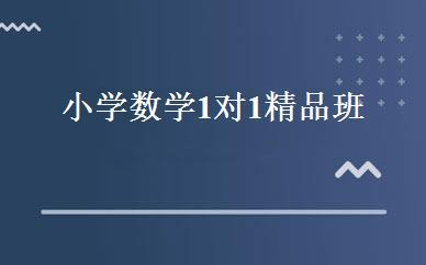 湖南其他职业资格哪家好,多少钱_小学数学1对1精品班 _长沙学大教育
