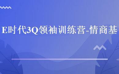 E时代3Q领袖训练营-情商基础营(下)