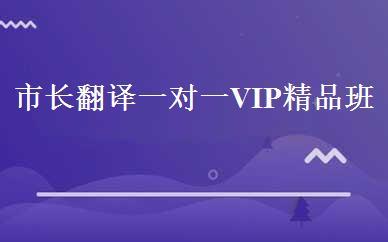 市长翻译一对一VIP精品班