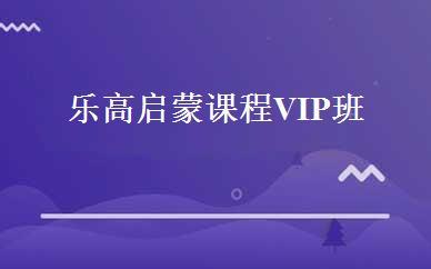 乐高启蒙课程VIP班