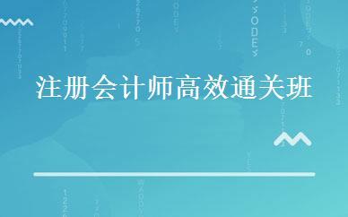 上海财经/会计哪家好,多少钱_注册会计师高效通关班 _上海仁和会计