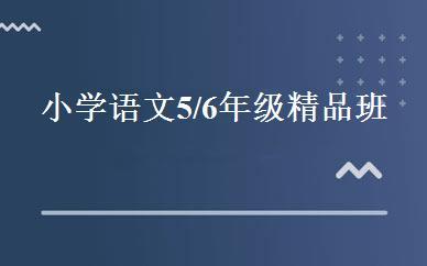 江苏小学辅导哪家好,多少钱_小学语文5/6年级精品班 _无锡优胜教育