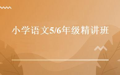 四川其他职业资格哪家好,多少钱_小学语文5/6年级精讲班 _成都雅途教育