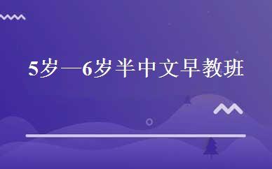 5岁—6岁半中文早教班