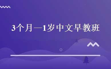 3个月—1岁中文早教班