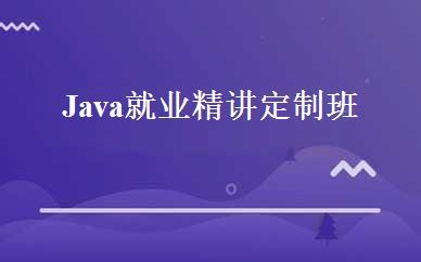 Java就业精讲定制班