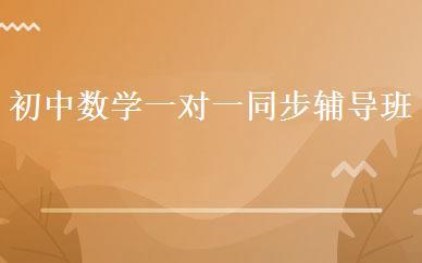 天津小学辅导哪家好,多少钱_初中数学一对一同步辅导班 _天津尚学教育