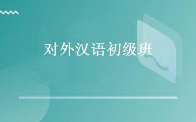 非对外汉语海外就业项目