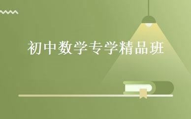 江苏小学辅导哪家好,多少钱_初中数学专学精品班 _南京海川培优