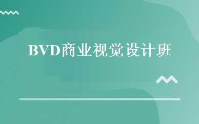 BVD商业视觉设计班