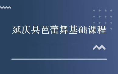 延庆县芭蕾舞基础课程