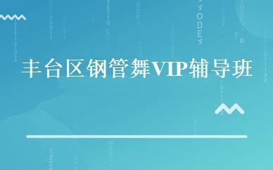 丰台区钢管舞VIP辅导班-北京舞蹈培训