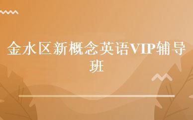 金水区新概念英语VIP辅导班