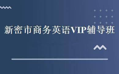 新密市商务英语VIP辅导班-郑州市丁老师文化培训中心