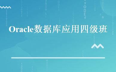Oracle数据库应用四级班