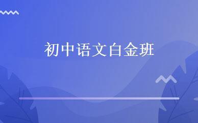 初中语文白金班