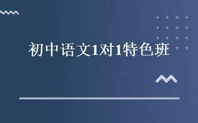 初中语文1对1特色班