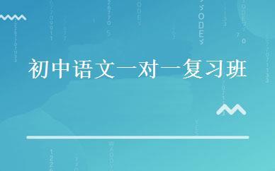 初中语文一对一复习班