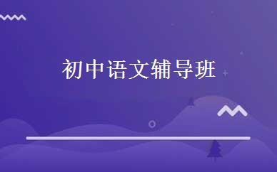 初中语文辅导班