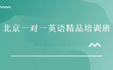 北京一对一英语精品培训班