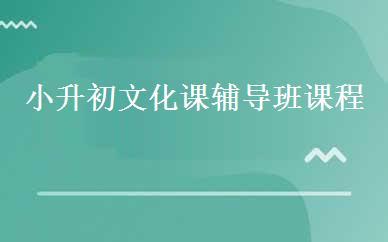 郑州小升初辅导培训哪家好,多少钱_小升初文化课辅导班课程-郑州华清教育