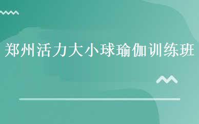 郑州活力大小球瑜伽训练班