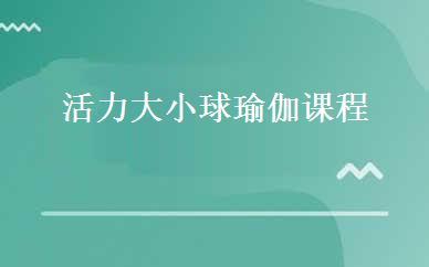 郑州瑜伽/健美操培训哪家好,多少钱_活力大小球瑜伽课程-郑州梵月瑜伽教练培训学院